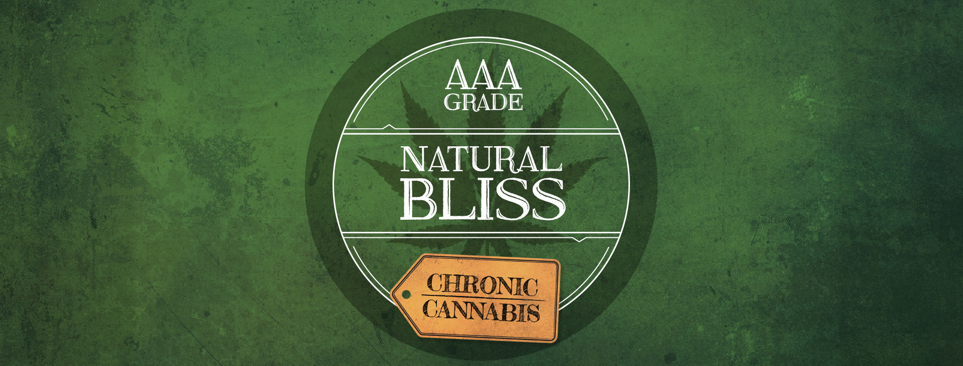 Chronic Cannabis